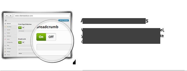 Advanced Theme Options