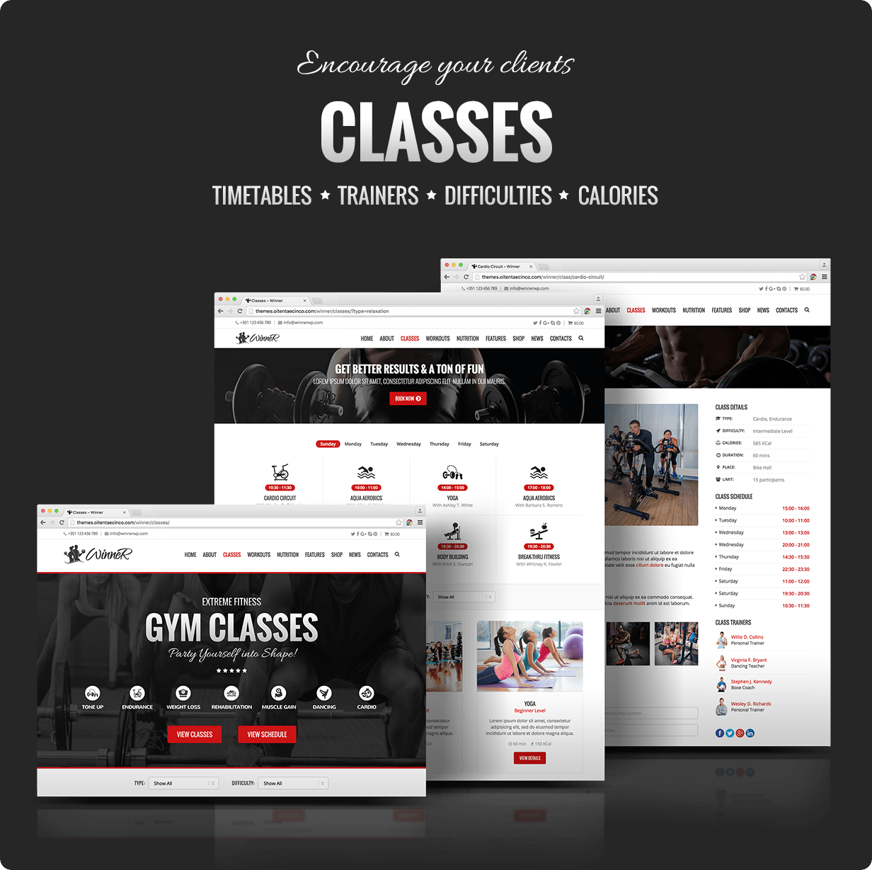 Winner Classes