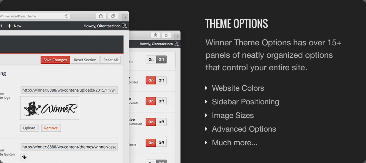 Winner Theme Options